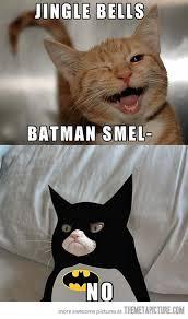 cat batman costume grumpy batman the meta picture