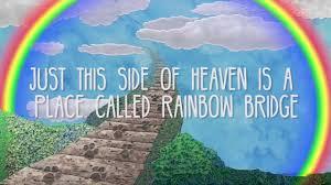 100 Memories By Design Rainbow Bridge Theme Sample Tucker Pet Tribute Video