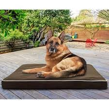 Arlee Home Fashions Dog Bed by Memory Foam Dog Beds For Less Overstock Com