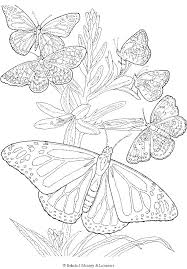 Tiger Swallowtail Butterfly Coloring Page Pages Of A Free Printable Adult Butterflies And Flowers