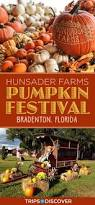 Mikes Pumpkin Patch Jacksonville Nc by Best 25 Florida Festivals Ideas On Pinterest Festivals In