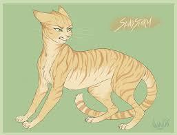 warrior cat warrior cats sandstorm by vanycat on deviantart