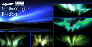 Northern Lights 14 Pack by Wynio