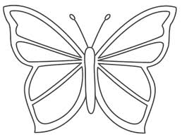 Butterfly Coloring Pages Php Image Gallery Printable