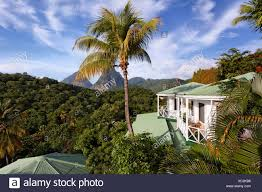 100 J Mountain St Lucia Anse Chastanet Resort Ock Photos Anse Chastanet Resort Ock