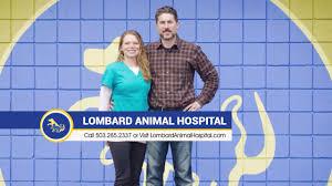 lombard animal hospital holistic veterinarian portland oregon