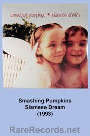 Rhinoceros Smashing Pumpkins Tab by The 25 Best Siamese Dream Ideas On Pinterest Oyster Online