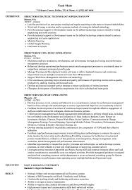 Download Director Strategic Operations Resume Sample As Image File