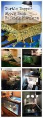Decorator Crab Tank Mates by Best 25 Turtle Aquarium Ideas On Pinterest Aquarium Ideas Fish