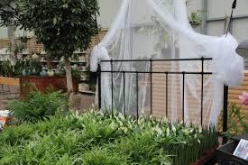 pflanzen für das schlafzimmer gartencenter zulauf