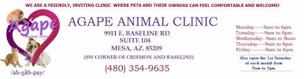 agape animal hospital mesa veterinary services agape animal clinic mesa veterinary