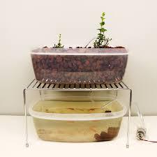Cool Easy Aquaponics Setup Electronics Stuff Pinterest
