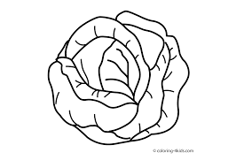Cabbage Vegetable Coloring Page For Kids Printable