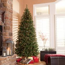 7ft Pre Lit Christmas Trees by Classic Pine Full Pre Lit Christmas Tree 10 Ft Clear Hayneedle