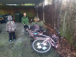 Seattle Christmas Tree Disposal 2015 by January 2015 Family Ride