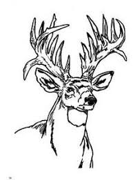 Inspiration Graphic Deer Head Coloring Pages