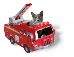 Cat Toys : Irresistible Cardboard Toy Vehcles For Cats. Btat Fire Engine Toy Truck Toysmith Amazonca Toys Games Road Rippers Rush Rescue Youtube Vintage Lesney Matchbox Vehicle With Box Red Land Rover Of Full Firetruck Fidget Spinner Thelocalpylecom Page 64 Full Size Car Bed Boat Bunk Grey Diecast Pickup Scale Models Disney Pixar Cars Rc Unboxing Demo Review Fire Truck Toy Box And Storage Bench Benches Fireman Sam Lunch Bagbox The Hero Next Vehicles Emilia Keriene Rare Antique Original 1920s Marx Patrol Creative Kitchen Product Target Thermos Boxes