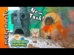 Spongebob Fish Tank Accessories by Fish Aquarium Supplies Fred U0027s Pet Products Online 2017