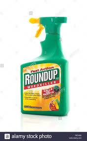 Roundup Weedkiller Spray Bottle On A White Background