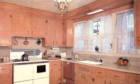 1960 Kitchen Cabinets Designs Retro Renovation Com 4 Painting 1960s