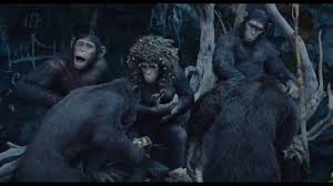 Royal Ape Family   Planet Of The Apes Wiki   FANDOM Powered By Wikia Closer Look Dawn Of The Planet Apes Series 1 Action 2014 Dawn Of The Planet Apes Behindthescenes Video Collider 104 Best Images On Pinterest The One Last Chance For Peace A Review Concept Art 3d Bluray Review High Def Digest Trailer 2 Tims Film Amazoncom Gary Oldman