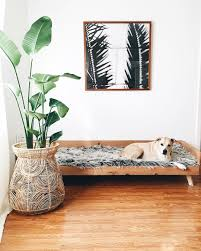 Leaf Studio Day Sofa Slipcover by Best 25 Dog Couches Ideas On Pinterest Dog Couch Cover Dog