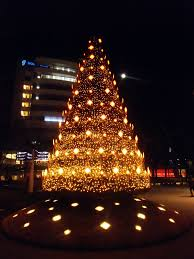 Type Of Christmas Tree Lights by December 2013 Japanxhunter