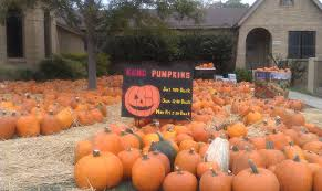 Pumpkin Patch Marble Falls by Pumpkin Patches Haunted Houses And More Halloween Fun Around