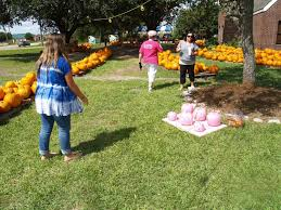 Live Oak Pumpkin Patch Fire by From Pumpkin Patches To Oktoberfest Here U0027s Your Guide To Fall