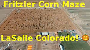 Denver Pumpkin Patch Corn Maze by Fritzler Maze Lasalle Colorado Corn Maze And More Sanchez Fun