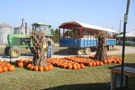 Free Pumpkin Patch In Fredericksburg Va by Chesterfield Berry Farm And Market Home Facebook