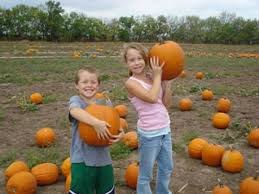 Pumpkin Patches Near Colorado Springs Co by Field Trips Colon Orchards