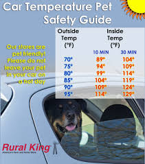 Rural King Is Pet Friendly. Please Do Not Leave Your Pet Out In ... Amazoncom High Tech Pet Humane Contain X10 Rechargeable Multi Dog Gone Problems How To Keep Your Dog Safe Around Weed Killer Canine Hoarders Why Do Dogs Bury Food Petful What Should I If My Dies At Home The 25 Best Proof Fence Ideas On Pinterest Digging Dogs Blog Ruff Life Outfitters Animal Tips Archives Tupelolee Society Wireless Fence 2017 Top Consumer Picks Expert Unbiased Reviews Logic Lol You Stop Feeding Your Commercial 26 Quick Simple Ways To Relieve Boredom Puppy Leaks Is It Legal A In Yard Willamette Week