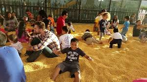 Livermore Pumpkin Patch by Gm Farms Livermore Halloween 2016 V7 Youtube