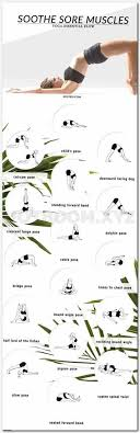 Poses And Pose Moves Beginners Select Your Top Stretch Yoga Asanas Chart For Weight Loss