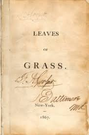 The Wound Dresser Pdf by Leaves Of Grass By Walt Whitman Free Pdf Global Grey