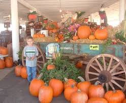 Pumpkin Patch Durham North Carolina by Ragan U0026 Holly U0027s Pumpkin Patch Apex Fall Events Pinterest
