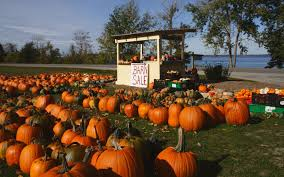 Pumpkin Patch Maryland by America U0027s Best Towns For Halloween Travel Leisure