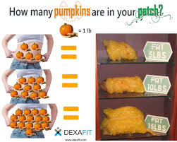 Redlands Fl Pumpkin Patch by Vo2max Twitter Search