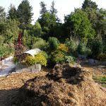 White Marble Chips For Landscaping Elegant Milo Mitchel Landscape Gardening
