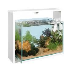 aquarium de 30 litres achat vente aquarium de 30 litres pas