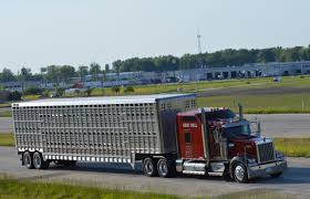 Pictures From U.S. 30 (Updated 3-2-2018) Hshot Trucking Pros Cons Of The Smalltruck Niche Livestock Haulers May Receive Another Extension For Eld Rules Producers And Feedlots Are Facing A Trucker Shortage Mc Bdouble Transport Driver Jobs Australia Fleet Says It Acted Within Law In Denying Job To With Experienced Truck Fmcsa Clarifies Guidance Horse Haulers Topics Senate Passes Bill Exempting Livestock From Hinde Exports Livestock Plants Goods Ireland Uk Italy Cattle Driving Best Image Kusaboshicom Thomas Hauling Home Facebook