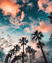 California Pretty Sky Cotton Candy Palm Trees