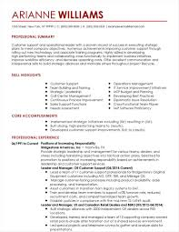 Cv For Customer Service Team Leader