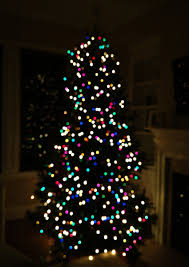 tree with white and colored lights lights