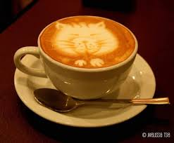 13 Cat Coffee Art Masterpieces