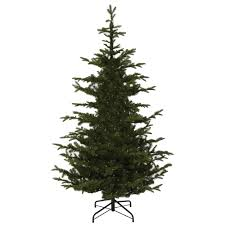 Dunhill Christmas Trees by Martha Stewart Living 7 5 Ft Indoor Norwegian Spruce Hinged