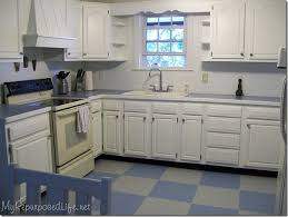 Vinyl Flooring Kitchen White Cabinets And Let Me Explain That My Floor Is About Years