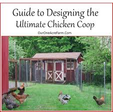 Guide To Designing The Perfect Chicken Coop - Good Ideas Chicken Coop With Nesting Box And Roosting Bar Features Summerhawk Ranch Extra Large Victorian Teak Barn Abc Acres Chickens Old Red 37 With Medium Coops That Rooftop Roof Top Planter Precision Pet Products Dog House Chewycom Scolhouse Saloon 22 Diy You Need In Your Backyard Quality Built Nesting Boxes Doors Ramps Best Housing Review Position