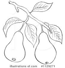 Royalty Free RF Pear Clipart Illustration by Picsburg